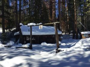 Old Line Cabin