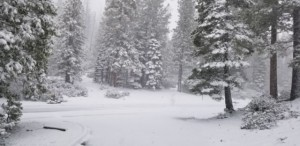Snow 5-26-19